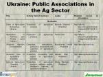 ukraine public associations in the ag sector1