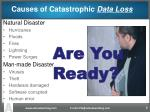 causes of catastrophic data loss