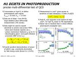 h1 dijets in photoproduction precise multi differential test of qcd