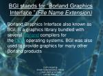 bgi stands for borland graphics interface file name extension