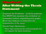 what next after writing the thesis statement