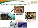 focus area management structure
