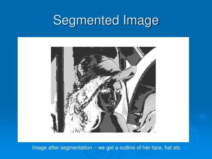 Segmented Image
