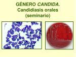 g nero candida candidiasis orales seminario