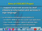 aims of visicast project