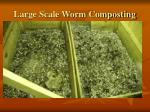 large scale worm composting2