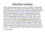 inductive turkeys