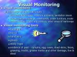 visual monitoring