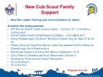 new cub scout family support