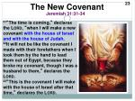 the new covenant1