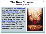 the new covenant2