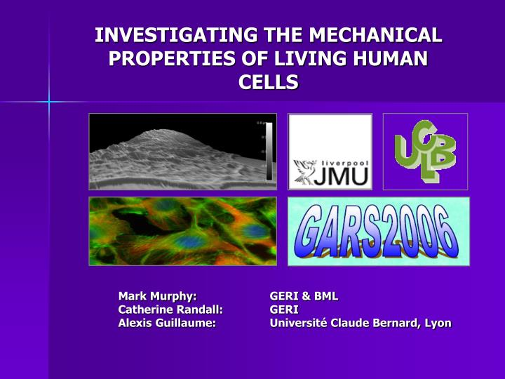 investigating the mechanical properties of living human cells n.