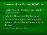 enemies of the forest wildfires