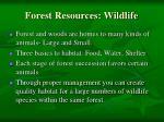 forest resources wildlife