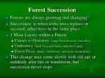 forest succession