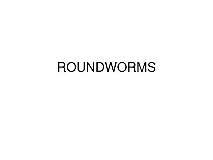 roundworms n.