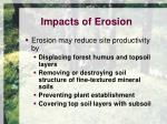 impacts of erosion1