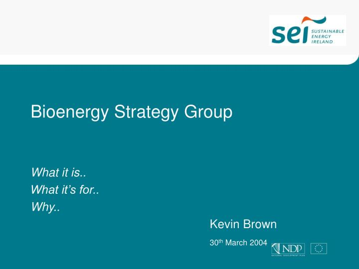 bioenergy strategy group n.