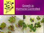 growth is hormone controlled2