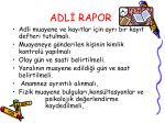 adl rapor1
