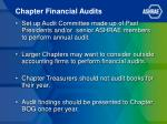 chapter financial audits