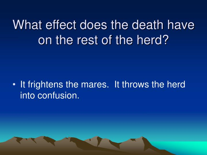 What effect does the death have on the rest of the herd?