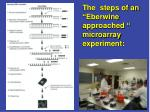 the steps of an eberwine approached microarray experiment