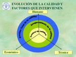 evoluci n de la calidad y factores que intervienen