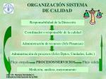 organizaci n sistema de calidad