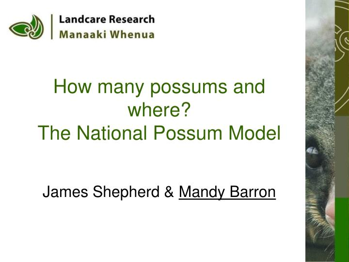 how many possums and where the national possum model n.