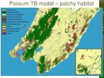 possum tb model patchy habitat