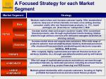 a focused strategy for each market segment