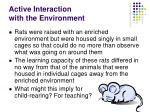 active interaction with the environment