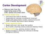 cortex development