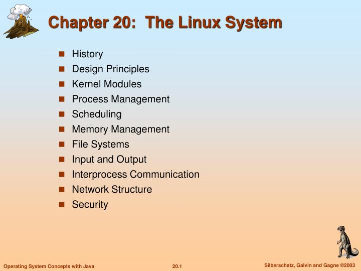 chapter 20 the linux system n.