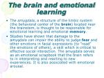 the brain and emotional learning