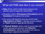 what will rtib look like in our school
