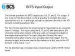 bits input output