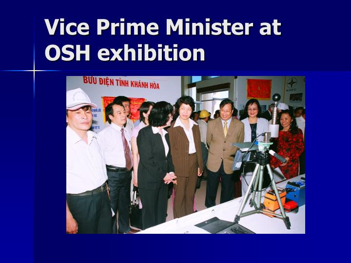 Vice Prime Minister at OSH exhibition