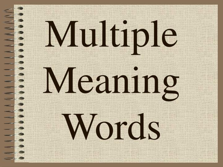 multiple meaning words n.