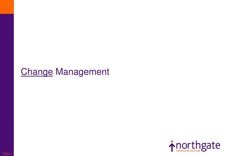 change management n.