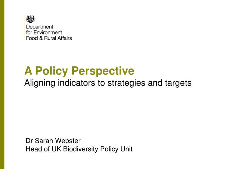 a policy perspective aligning indicators to strategies and targets n.