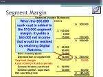 segment margin2