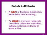 beliefs attitudes