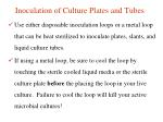 inoculation of culture plates and tubes