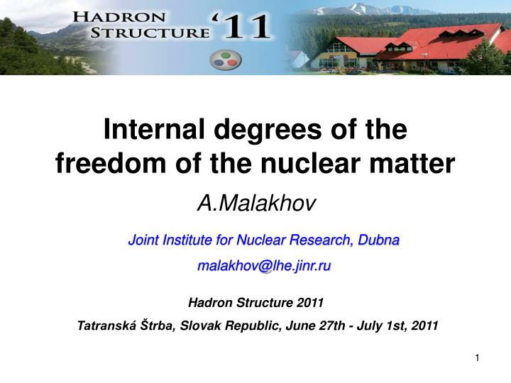 internal degrees of the freedom of the nuclear matter n.