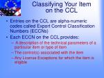 classifying your item on the ccl2