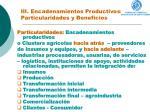 iii encadenamientos productivos particularidades y beneficios1