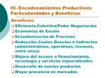 iii encadenamientos productivos particularidades y beneficios2