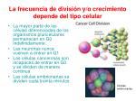 la frecuencia de divisi n y o crecimiento depende del tipo celular